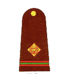 naib subedar pakistan army insignia